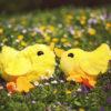 Nähen für Ostern: Hühner nähen Anleitung