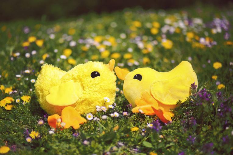 Osterküken nähen: Hühner nähen Anleitung