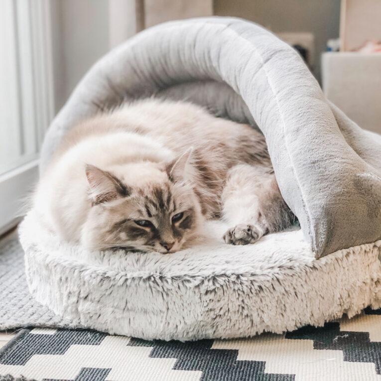 Katzen- oder Hundebett nähen mit Schnittmuster Muschel SHELLY