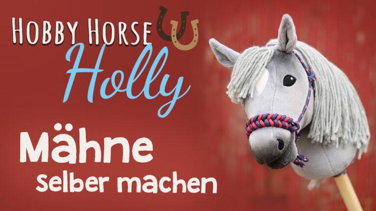 Video: Hobby Horse Mähne selber machen