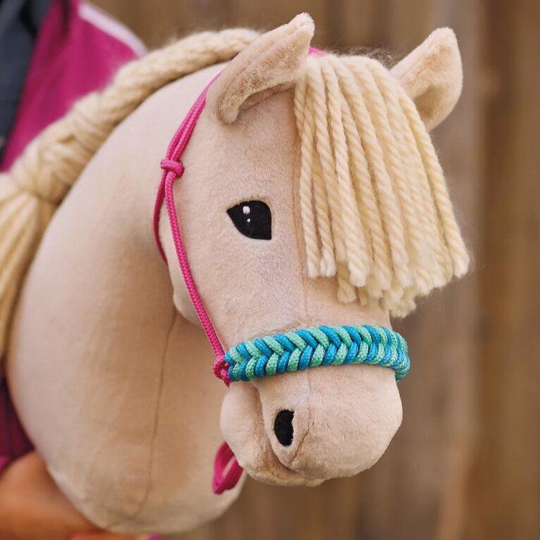 Hobby Horse Augen besticken (von Hand)